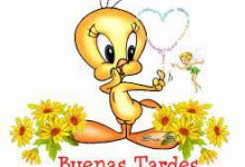 Photo of Buenas Tardes En Ingles Para Whatsapp Celular