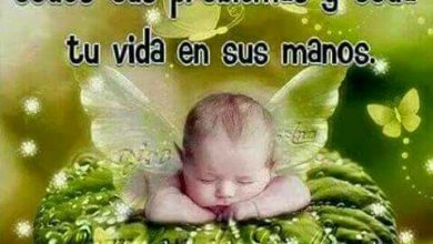 Photo of Descansa Mi Amor Dulces Sueños Para Whatsapp