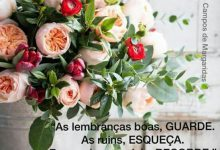 Photo of Domingo Frases Para Whatsapp