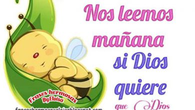 Photo of Dulces Sueños Corazon Para Whatsapp