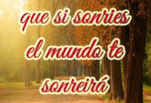 Photo of Feliz Tarde De Miercoles Para Facebook Y Whatsapp