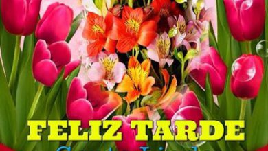 Photo of Flores De Buenas Tardes Para Whatsapp Celular