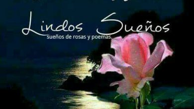 Photo of Fotos De Sueños Bonitos Para Whatsapp