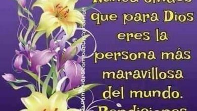Photo of Frases Buenos Dias Para Mi Amor Para Whatsapp