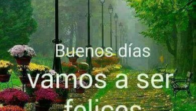 Photo of Frases De Amor D Buenos Dias Para Whatsapp
