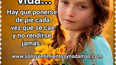 Photo of Frases De Buenas Tardes Para Enamorar Para Whatsapp Celular