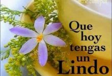 Photo of Frases De Buenos Dias Amor Con Imagenes