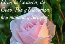 Photo of Frases De Feliz Tarde Para Facebook Y Whatsapp