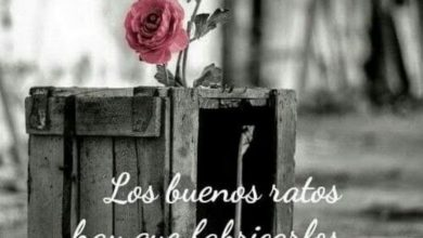 Photo of Frases Hermosas De Amor De Buenos Dias Para Celular
