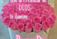 Photo of Frases Lindas De Amor De Buenos Dias Para Whatsapp
