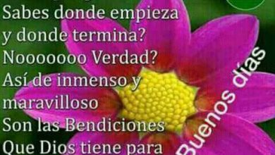 Photo of Frases Romanticas De Buenos Dias Para Whatsapp