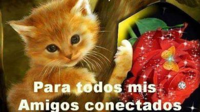 Photo of Imagenes De Buenas Tardes Amiga Para Facebook Y Whatsapp