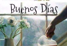 Photo of Imagenes De Dar Los Buenos Dias Para Whatsapp