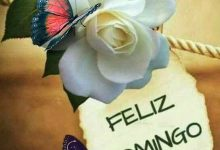 Photo of Imagenes Feliz Domingo Mi Amor Para Whatsapp