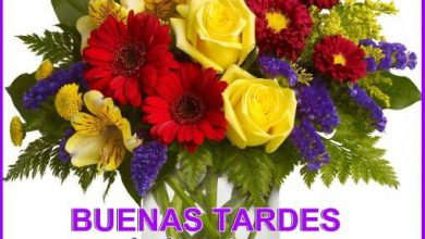 Photo of Imagenes Romanticas De Buenas Tardes Para Facebook Y Whatsapp