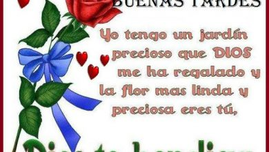Photo of Poemas De Buenas Tardes Para Whatsapp Celular