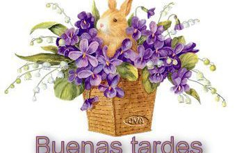Photo of Que Tengas Una Linda Tarde Para Whatsapp Celular
