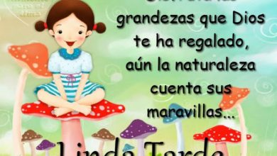 Photo of Tarjetas Buenas Tardes Gratis Para Facebook Y Whatsapp