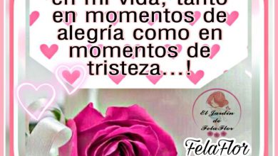 Photo of Tarjetas De Feliz Tarde Amor Para Whatsapp Celular