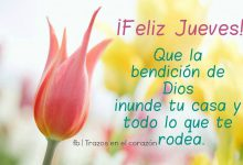 Photo of Feliz Tarde Jueves