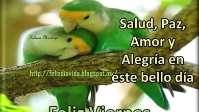 Photo of Feliz Viernes Amor Frases
