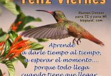 Photo of Feliz Viernes Familia Para Whatsapp