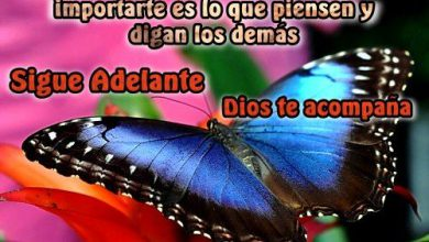 Photo of Frases Bonitas De Feliz Jueves Para Facebook