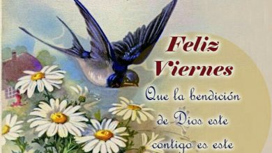 Photo of Frases De Feliz Dia Viernes