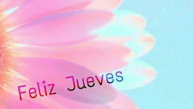 Photo of Imagenes Con Frases Feliz Jueves