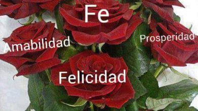 Photo of Imagenes De Feliz Jueves Amor