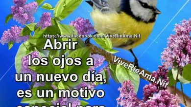 Photo of Imagenes Jueves