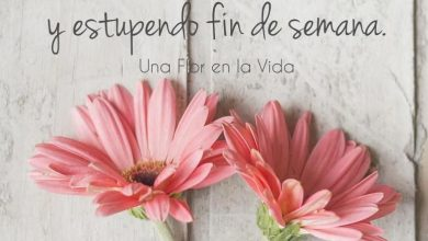 Photo of Por Fin Viernes Frases