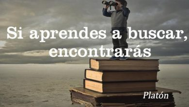 Photo of Si Aprendes A Buscar Encontraras frases bonitas