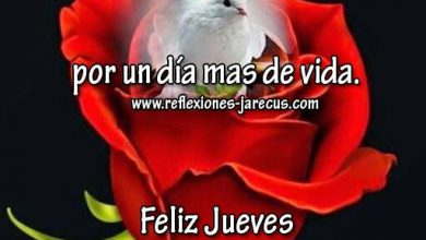 Photo of Tarjetas De Jueves Para Compartir Para Facebook