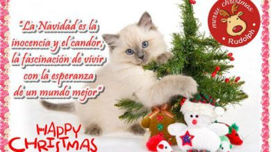 Photo of Imagenes De Frases Navideñas