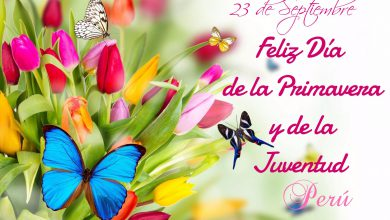 Photo of Feliz dia de la primavera y juventud frases