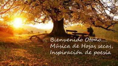 Photo of Feliz otoño frases