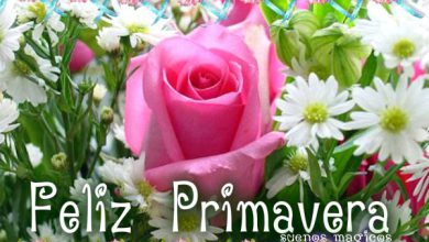 Photo of Feliz primavera amor