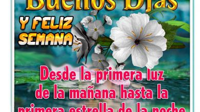 Photo of Bendiciones Feliz Lunes Para Whatsapp Gratis para celular