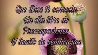 Photo of Buen Martes Frases Para Whatsapp Gratis