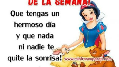 Photo of Buenos Dias Feliz Miercoles Gif Con Movimiento Para Whatsapp Gratis