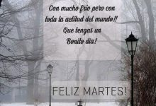 Photo of Feliz Dia Martes