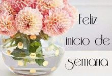 Photo of Feliz Lunes A Todos Para Facebook Gratis