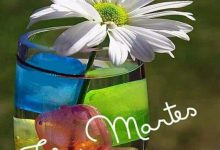 Photo of Feliz Martes Con Flores para celular