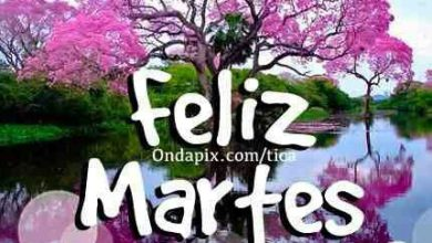 Photo of Feliz Martes Gracioso Para Descargar Gratis
