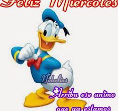 Photo of Feliz Miercoles A Todos Para Facebook Gratis