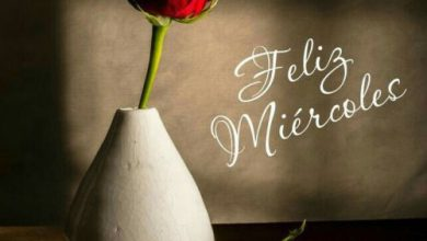 Photo of Feliz Miercoles Amor Para Whatsapp Gratis