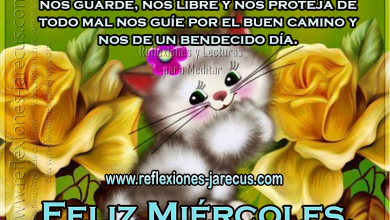 Photo of Feliz Miercoles Con Dios