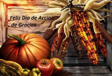 Photo of Feliz dia de accion de gracias celular