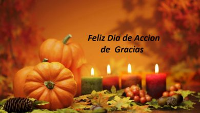 Photo of Feliz dia de accion de gracias frases para amigos